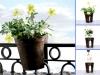 balcones-h