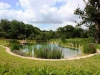 piscinas-ecologicas-3