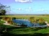 piscinas-ecologicas-4